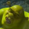 fartfisherman's avatar