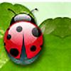 FashionDreams's avatar