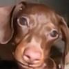Faye-ohki's avatar