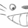 fbjon's avatar