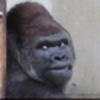 FearTheSirens's avatar