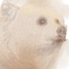 Featherstring's avatar