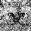 FEDORaLeXeev's avatar