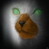 FeketeVerinenStjerne's avatar