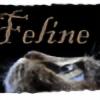felinesunset's avatar
