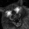 Felwine's avatar