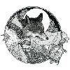 Fenrislord's avatar