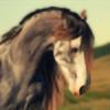 Fera1029's avatar