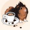FeretStudios's avatar