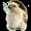 FernanPro's avatar