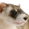ferretboy19's avatar