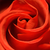 fgn's avatar