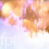 fierypoplartree's avatar