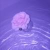 FiOlEeFoReVeR4's avatar