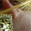 firefly-leuchtkaefer's avatar