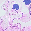 fiyunae's avatar