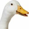 flatjusticereturn's avatar