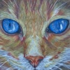 FLKNArt's avatar