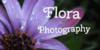 Flora-Photography