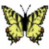 FloraLaurel's avatar