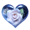Florasensi's avatar