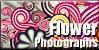 Flower-Photographs