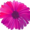 Flowerade's avatar