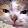 fogger1138's avatar