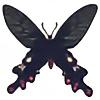 folderol's avatar