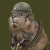 FooShoo56's avatar