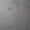 ForestSpirit14's avatar