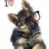 ForeverShep's avatar