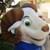FotografiaClassAAA's avatar