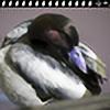 FotoSantuario's avatar
