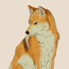 FoxAndSox's avatar