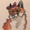Foxes-of-the-void's avatar