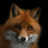Foxesareawesome's avatar