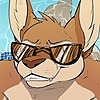 FoxinuhhBox's avatar