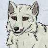 FoxNobody's avatar