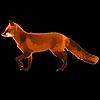 foxtailedx's avatar