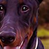 foxx-designs's avatar