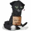 Foxy-Soul's avatar