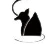 FoxyM3dia's avatar