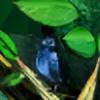 fp-Norza's avatar