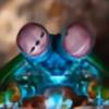fpasotti's avatar