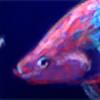 franknumber57's avatar