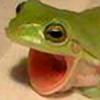 Freedomlastsforever's avatar