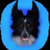 Fresca12's avatar