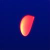 freshemedia's avatar