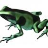 Frogpad's avatar